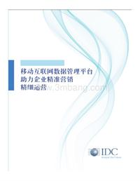 <em>TalkingData</em>-IDC-DMP白皮书